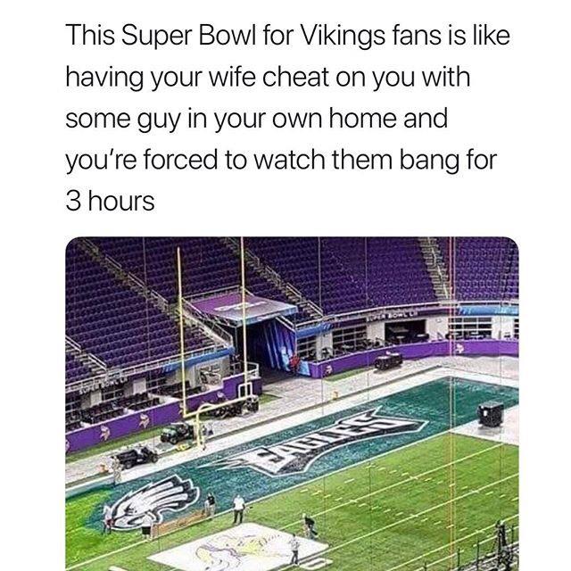 NFL Memes - Vikings Memes 2
